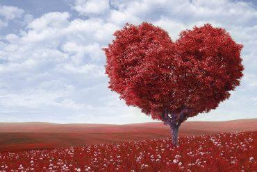 O amor, o código moral e a verdade essencial